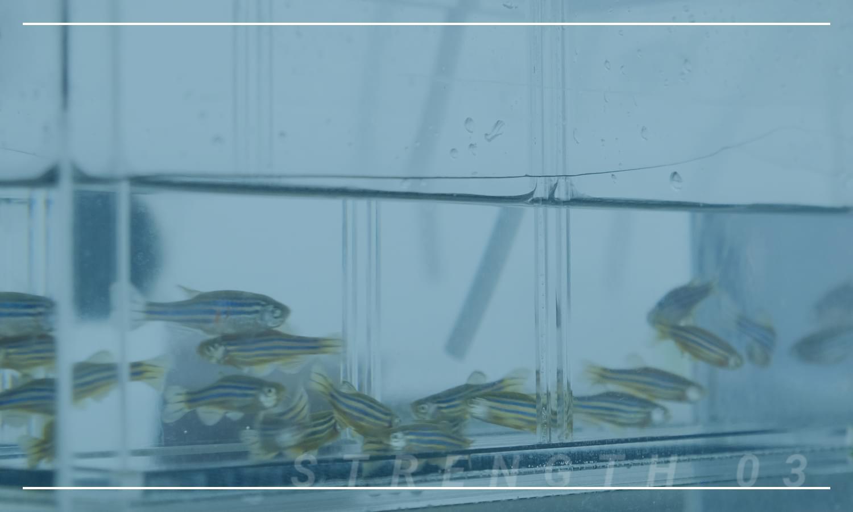 WET試験を通して安心で安全な排水管理を実現します